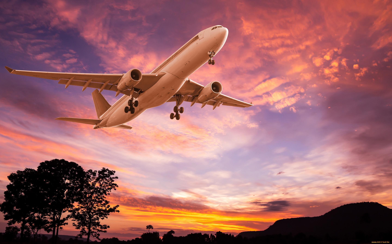 подготовили лучшие авиационные фото гостям предоставляется